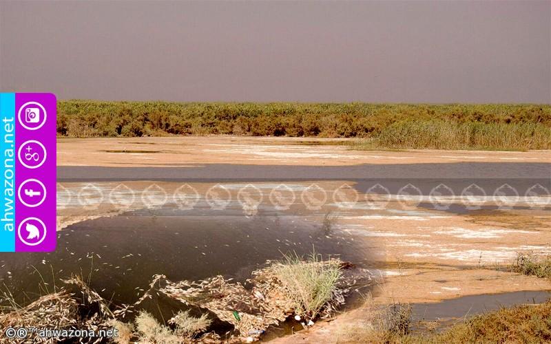 الأنهر الأحوازية وتبعات تغيير مجراها بإتجاه المناطق الفارسية