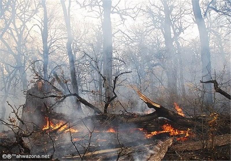 حريق هائل يلتهم غابات مدينة السوس