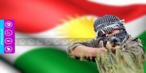 المقاومة الكردية تشتبك مع الحرس الثوري في محافظة كرمنشاه