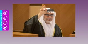 وزير إماراتي يتهم إيران بالتدخل بشؤون الدول الخليجية وإيران ترد