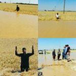 حكومة الإحتلال ترفض تعويض خسائر المزراعين الأحوازيين